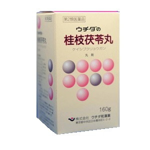 ウチダの桂枝茯苓丸 160g
